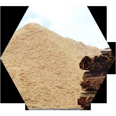 biomass image
